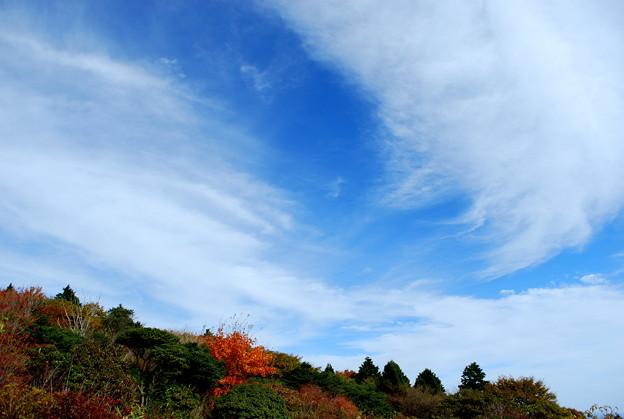 久住高原の空