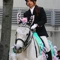 写真: 川崎競馬の誘導馬04月開催 桜Verその2-120409-02-large