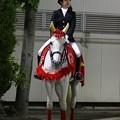 写真: 川崎競馬の誘導馬05月開催 こいのぼり青Ver-120516-01-large