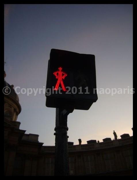 写真: P2220109