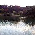 Photos: 管理釣り場1