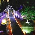 139 光のページェント2010-2011 by ホテルグリーンプラザ軽井沢