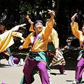 写真: 朝霞翔舞_08 - よさこい祭りin光が丘公園2011