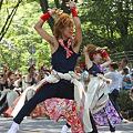 朝霞なるこ遊和会 - 第28回「彩夏祭」 関八州よさこいフェスタ 2011