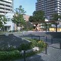 写真: 高層マンションの間には、小さな広場。