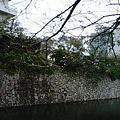 写真: 111019_1051~0001
