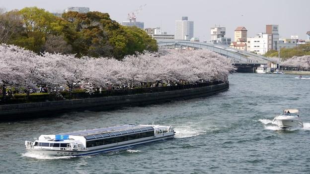花咲く水の都