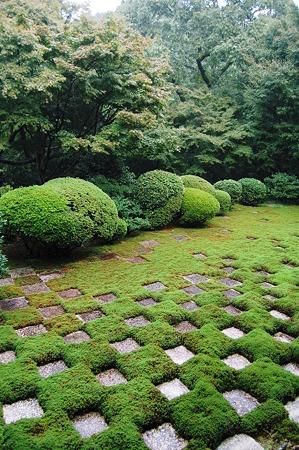 東福寺 北庭 小市松の庭 2010年10月31日_DSC_0216