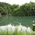Photos: 吉沼池