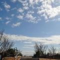 Photos: 20110213_111858