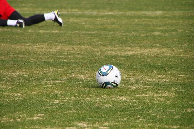 2011年の公式球