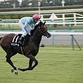 写真: 中山10R 返し馬 リリエンタール