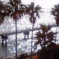 写真: おつきあいで、お台場、船の科学館。海がきらきら。海って眺めてるだ...
