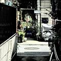 Photos: 七夕ひよこる~む