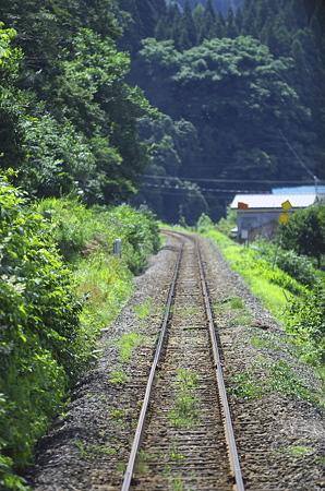 夏草の線路