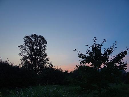 20110812 夜明け前