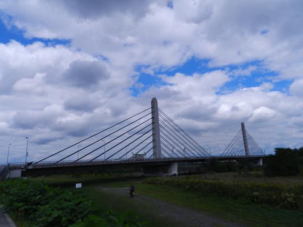 Photos: ツイン・ハープ橋