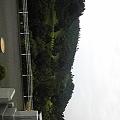 写真: 霊園の隣はゴルフ場。  大自然だよ~o(^-^)o
