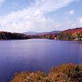 写真: Beaver Pond 9-25-10