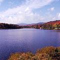 Photos: Beaver Pond 9-25-10