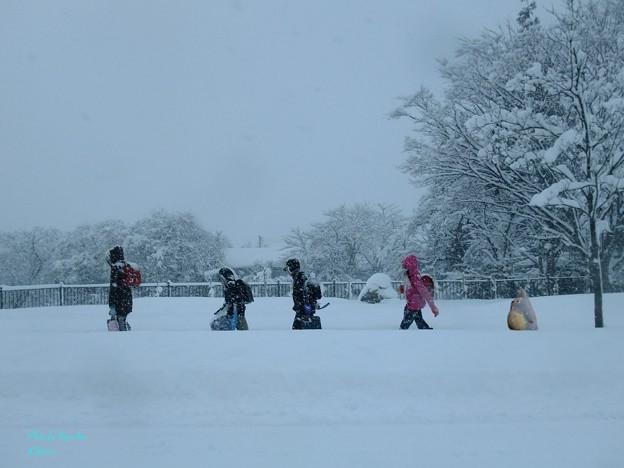雪国の通学風景