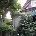 Photos: 現況:外観