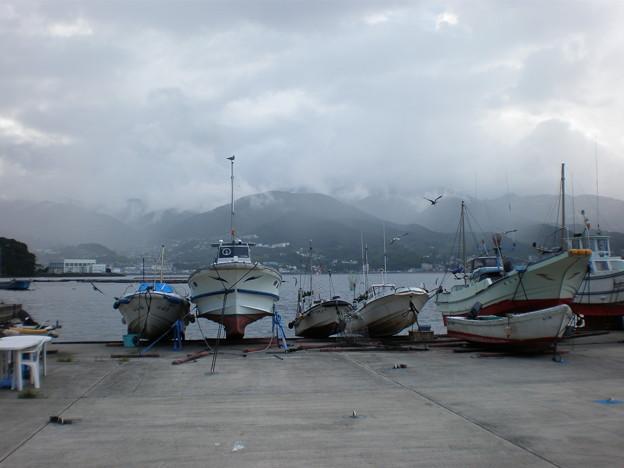 網代漁港5
