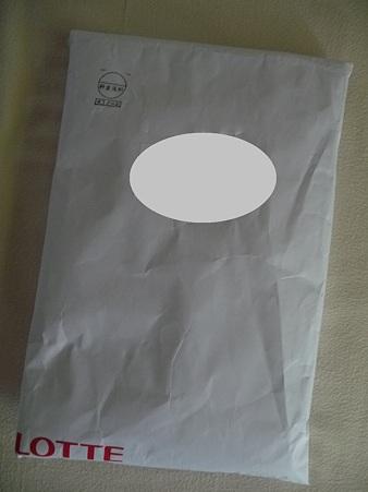 イコちゃんバッグ (2)