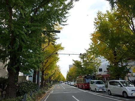 101119-紅葉 山下公園通り (3)