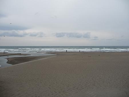 110115-鎌倉海岸 (6)