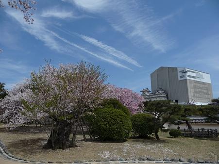 110417-姫路城 (194)