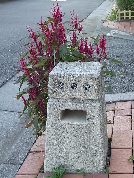 花の応援団^^