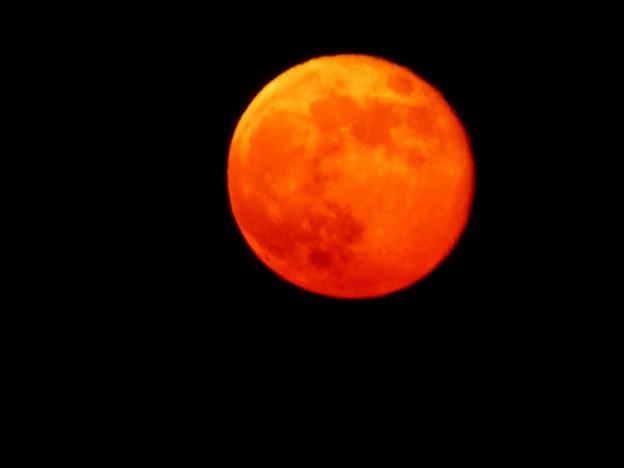 写真: 紅月