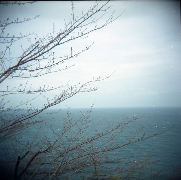 3月_熱海市 2