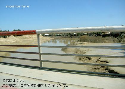メジェルダ川(上流)