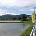 Photos: 梅雨の晴れ間