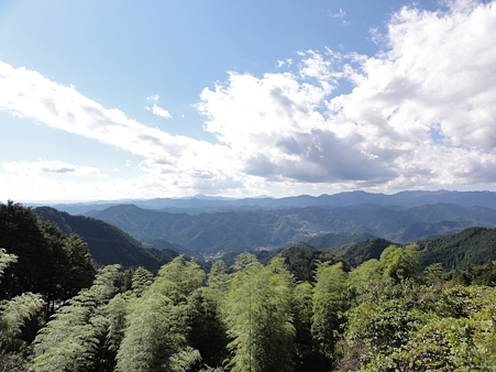 奥武蔵グリーンラインからの眺め2