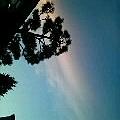 写真: 文化祭の作業中の空☆雲に夕...