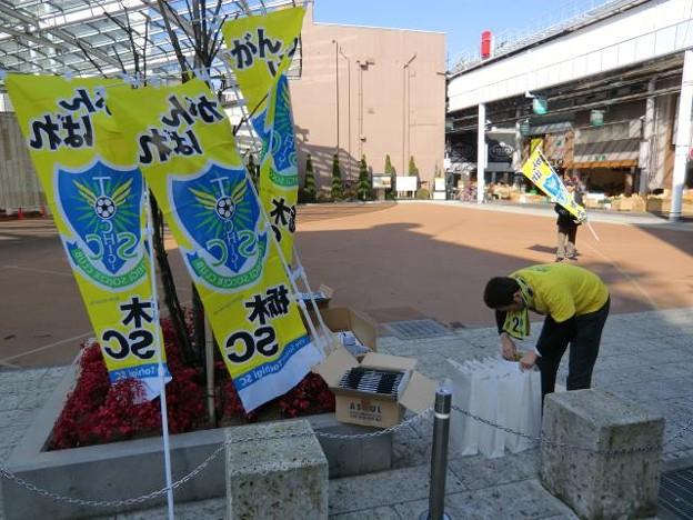 写真: 110226tochigi004