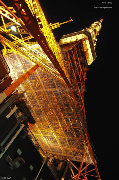 ザ・東京タワー