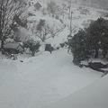 Photos: せっかく雪掻きしたのに、も...