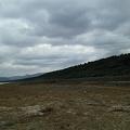 写真: 延々と続く虹の松原