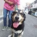 Photos: AZ君