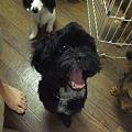 Photos: ・・・っていうか、それ笑顔か?!