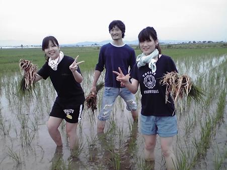 26日草取り(30)
