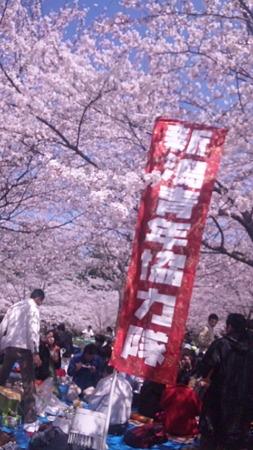 復興支援お花見大会 (7)