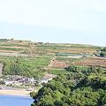 写真: 100517-4汐見の段々畑
