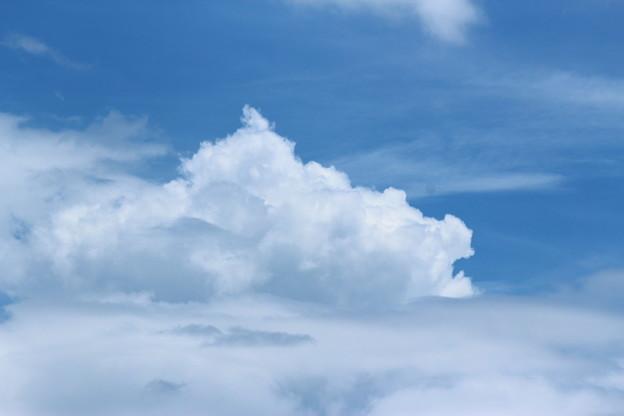 写真: 初夏の雲