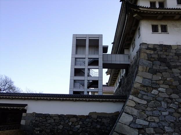 写真: 名古屋城09