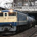 写真: pf1041-20080324